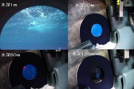 blue_black.JPG