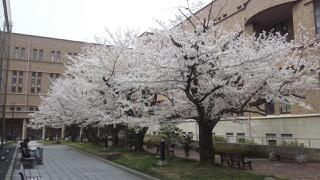 20120410_111020.jpg